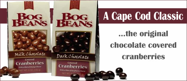 Chocolate Covered Cranberry Bog Beans from Cape Cod